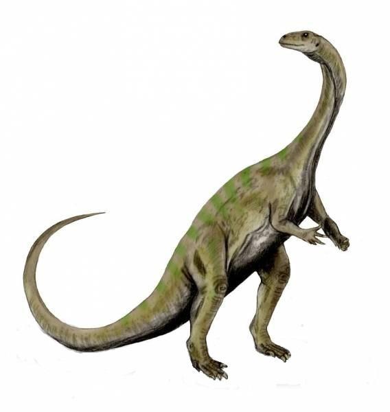 10_Платеозавр