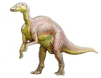 22_гадрозавр